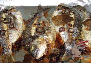 Gilthead Seabream in Oven