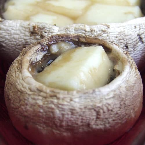 Mushroom Stuffed with Cheese