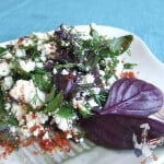 Goat Cheese Salad | giverecipe.com