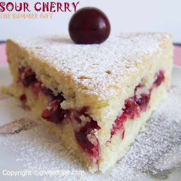 Sour Cherry Pie | giverecipe.com