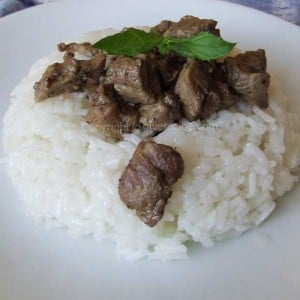 Meat On Rice | giverecipe.com