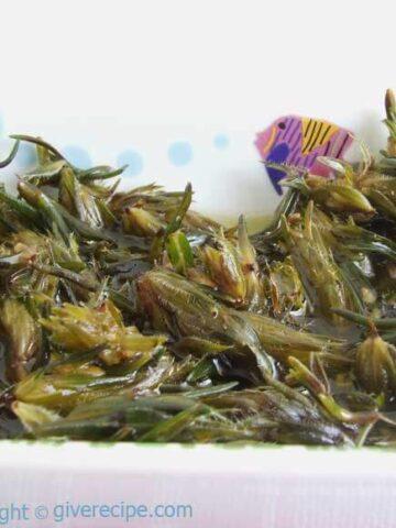 Preserving Fresh Thyme | giverecipe.com