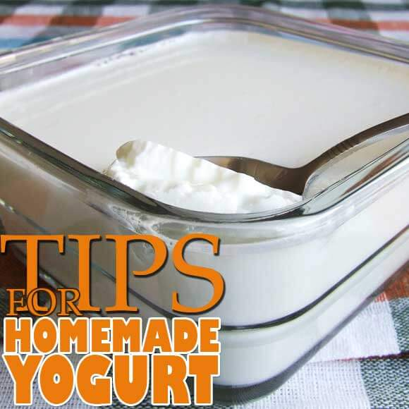 Homemade Yogurt | giverecipe.com