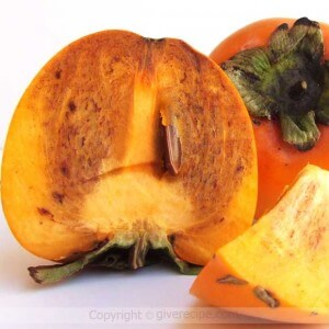 Persimmon Warms You Up | giverecipe.com