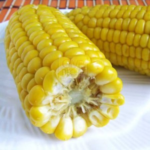 Corn Sweet Corn | giverecipe.com