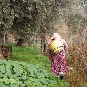 Hardworking Turkish Woman | giverecipe.com