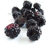 Blackberry The Protector Fruit thumbnail