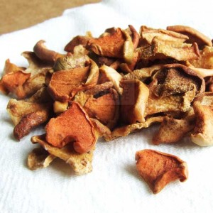 Dried Apple Chips | giverecipe.com