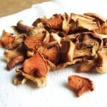 Dried Apple Chips thumbnail
