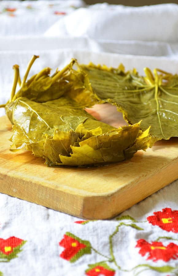 How To Cure Grape Leaves | giverecipe.com