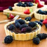 Sweet Mulberry and Chocolate Tart
