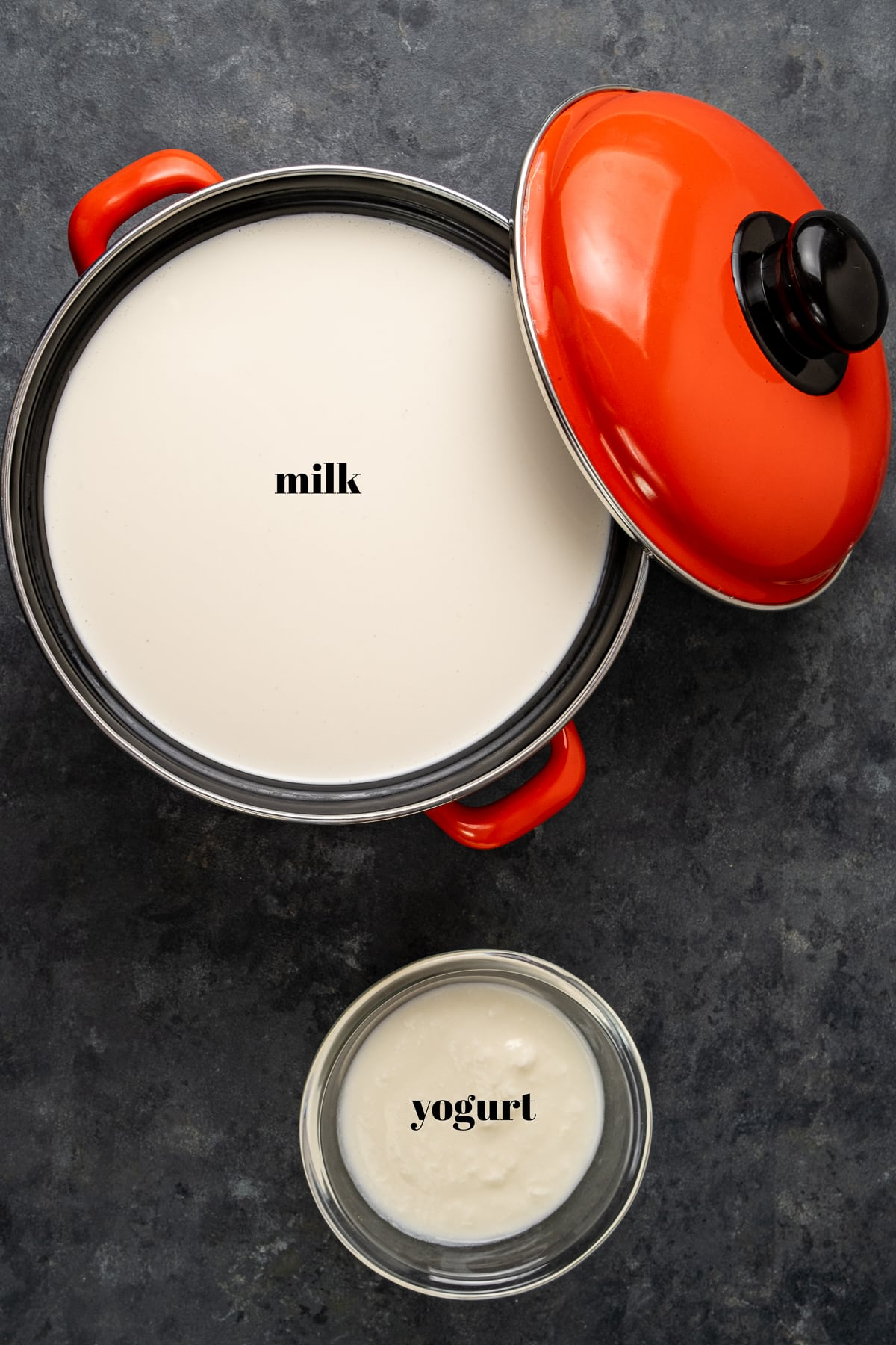 Milk in an enamel pot with a red lid on the side and yogurt in a small bowl on a dark background.
