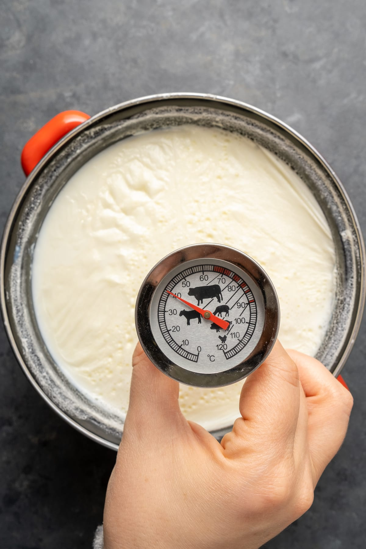 A hand measuring the temperature of milk in a pot with a thermometer.
