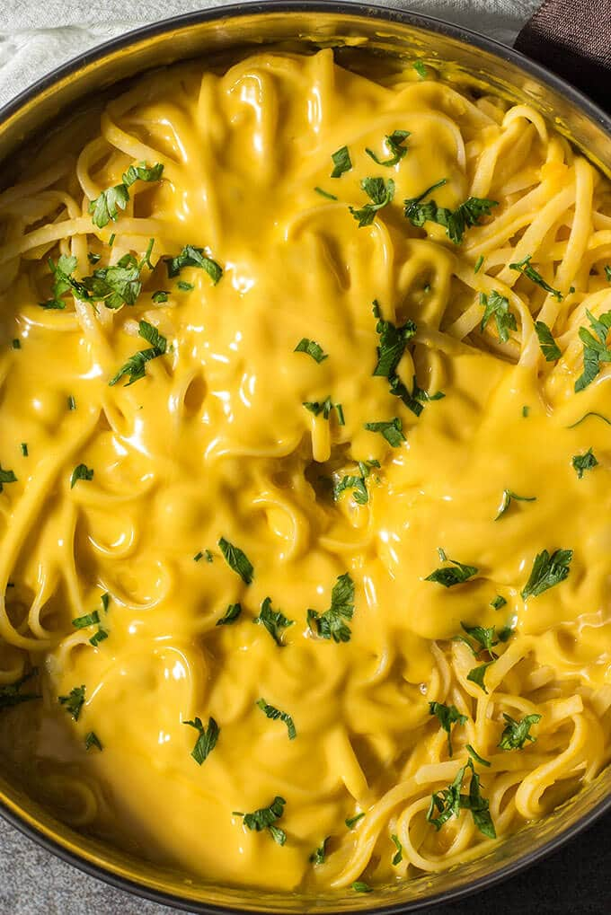 One Pot Creamy Pumpkin Pasta is is a family favorite and ready in less than 20 minutes! No cream at all! Cheesy and with a subtle garlic flavor. - giverecipe.com