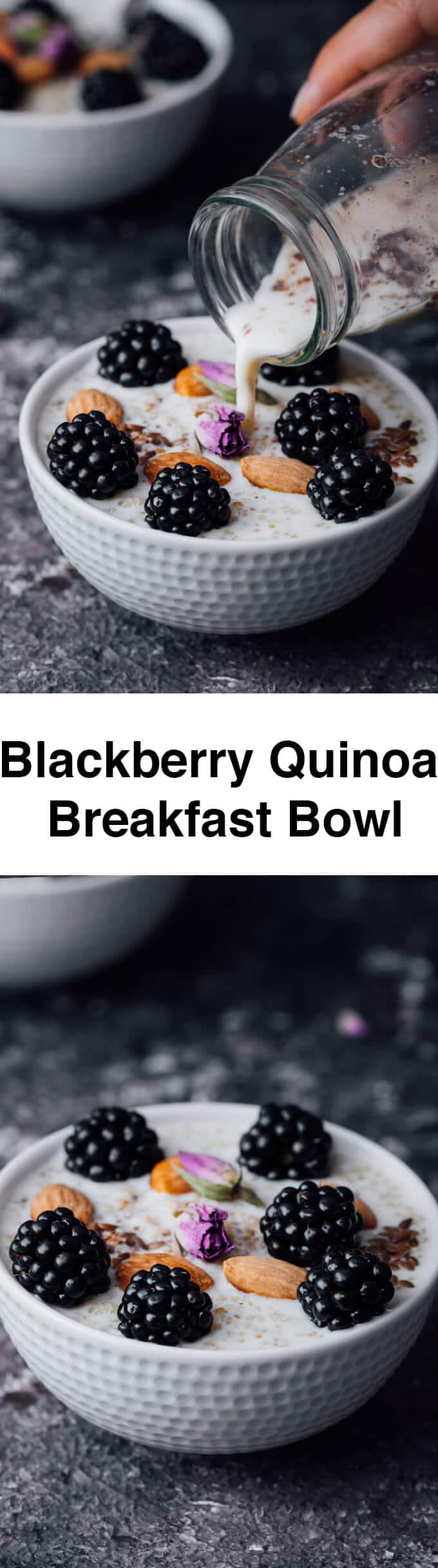 Blackberry Quinoa Breakfast Bowl gives a magical touch to your body with its super ingredients and makes your body ready for the day. Vegan and gluten-free.