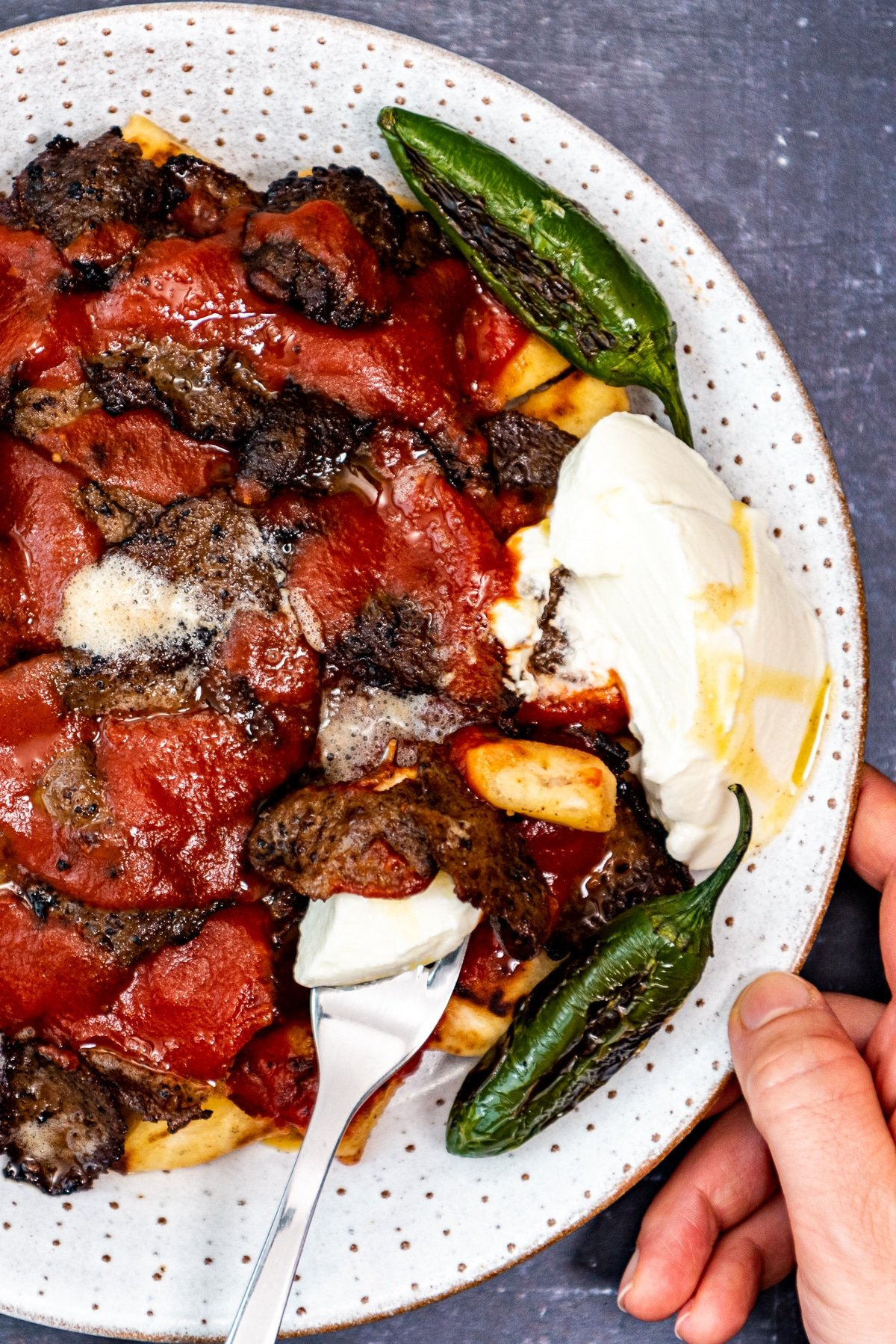 A hand holding the plate of Turkish iskender kebap.