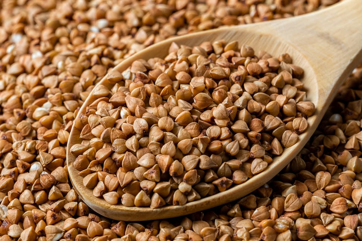 Close shot of roasted buckwheat on the ground and a wooden spoon full of buckwheat.