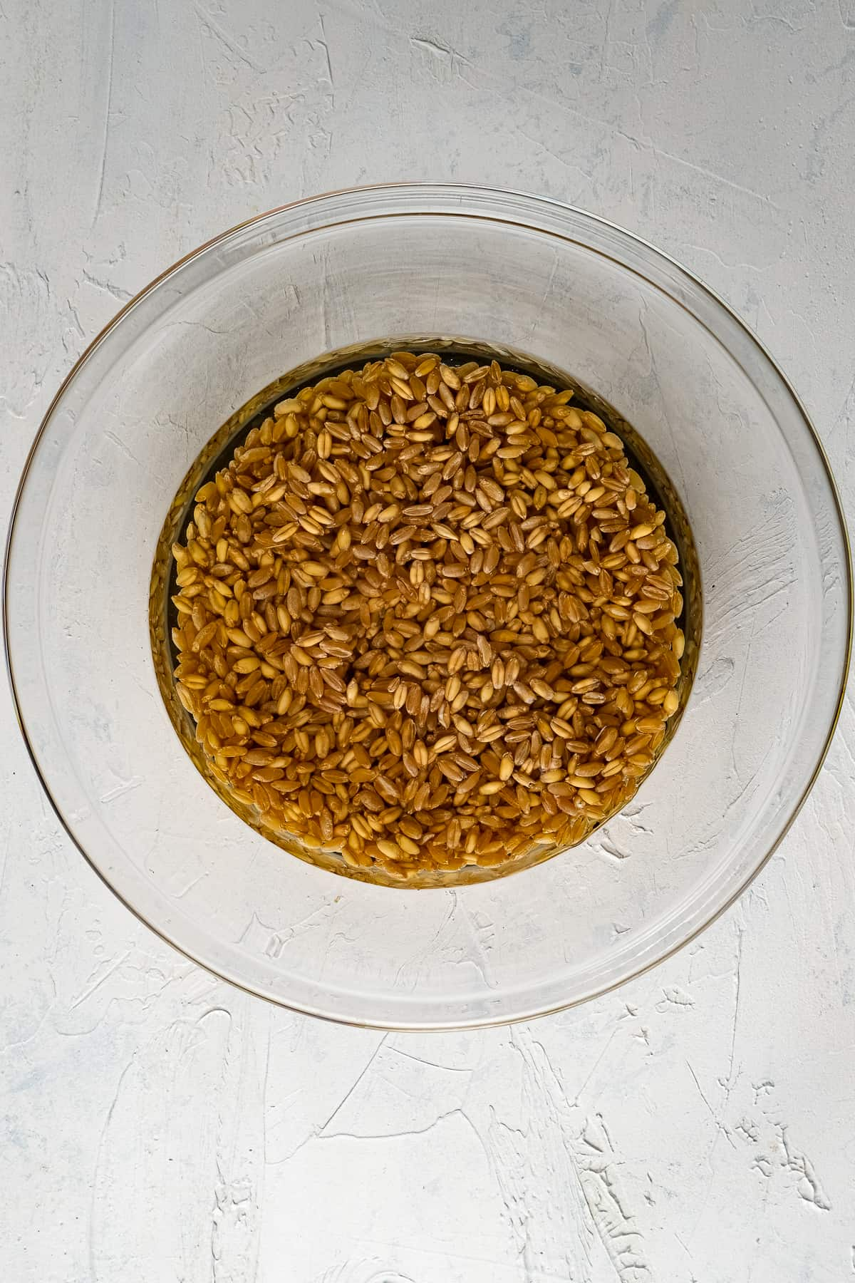 Red wheat berries in water in a glass bowl.