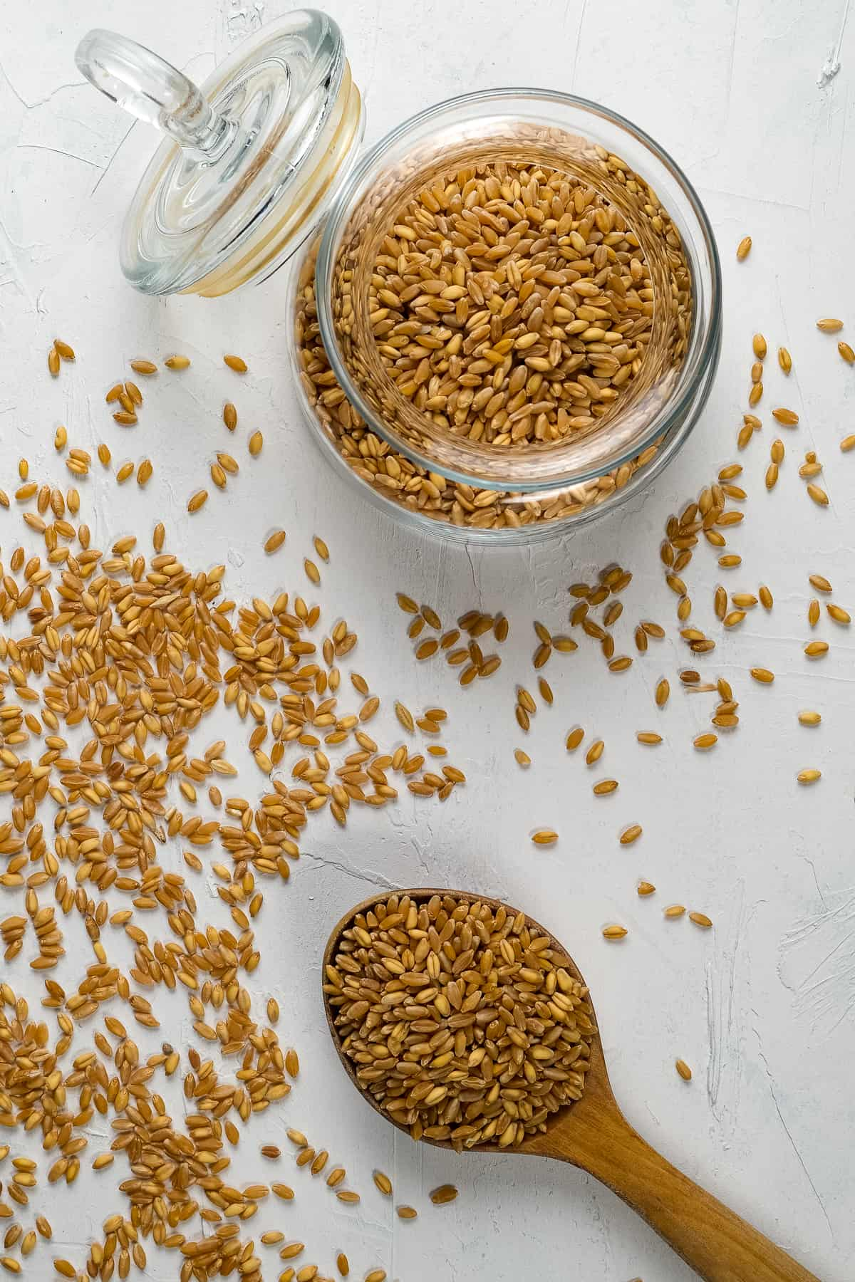 Red wheat berries in a glass jar, lid open and in a wooden spoon on a white background.